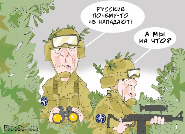 politolog-nato-eto-biznes-v-kotorom-zarabatyvayut-na-rusofobii